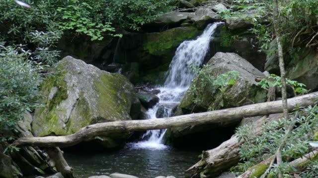 ローリングフォーク川の滝と洞窟のスモーキー山脈 NP テネシー州