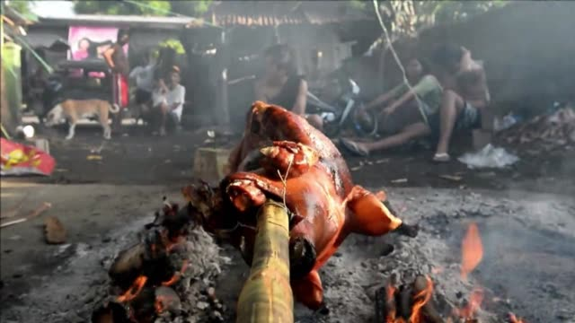 roast pigs decked out as superheroes paraded in the philippine village of balayan tuesday as part of one of the catholic nations most colourful... - religious celebration stock videos & royalty-free footage