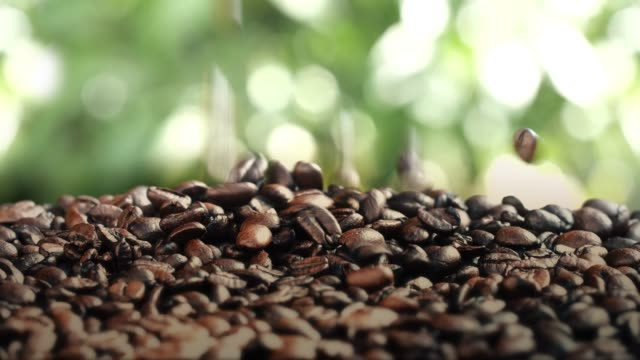 Roasted Arabica coffee beans falling into a pile.