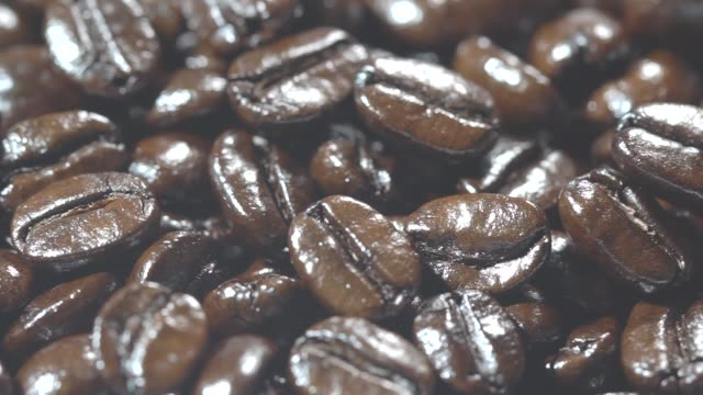 roasted arabica coffee beans - coffee drink stock videos & royalty-free footage
