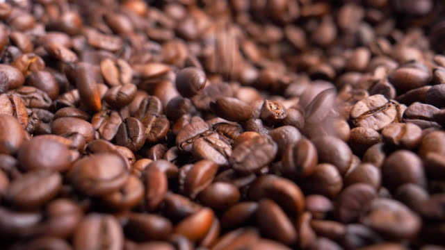 roasted arabica coffee beans - roasted coffee bean stock videos & royalty-free footage