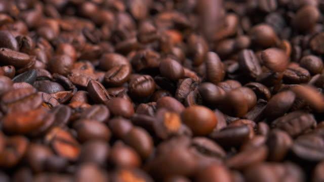 Grãos de café arábica torrado