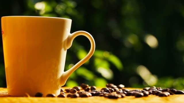 vídeos de stock, filmes e b-roll de grãos de café torrado na textura de bambu com a luz da manhã - molécula de cafeína