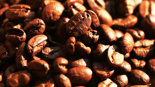 vídeos de stock, filmes e b-roll de grãos de café torrado com a luz da manhã - molécula de cafeína