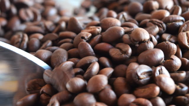 roasted grains of coffee, close-up - caffeine molecule stock videos & royalty-free footage