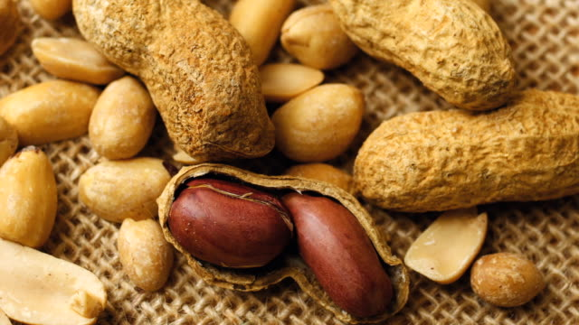roasted peanuts in shell - peanut food stock videos and b-roll footage