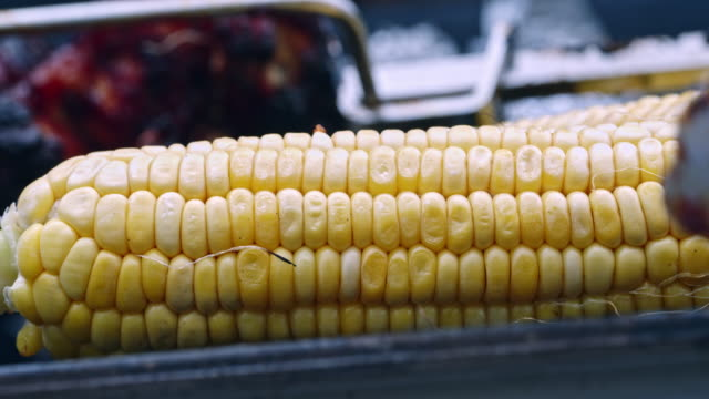 Roasting Corn on the Cob on Barbecue Grill
