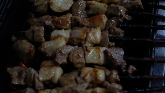 vídeos de stock e filmes b-roll de roasting lamb skewer - membro