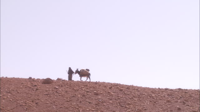 a robed man walks with a donkey across a desert. - donkey stock videos & royalty-free footage