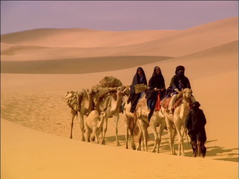 vídeos de stock, filmes e b-roll de robed traveller halts camel caravan to consult book for directions - montar um animal