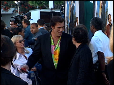 robert davi at the 'america's sweethearts' premiere on july 17 2001 - robert davi stock videos and b-roll footage