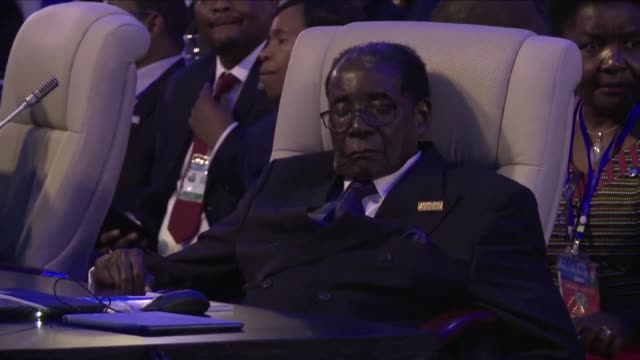 Robert Mugabe has been removed as president of Zimbabwe's ruling ZANU PF party and replaced by his former vice president Emmerson Mnangagwa