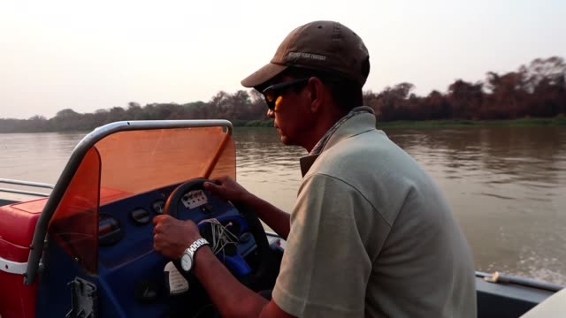 roberto carvalho macedo pilots a boat on the cuiaba river in pantanal on september 25, 2020 in pocone, brazil. roberto has been a tour guide for 30... - four animals stock videos & royalty-free footage