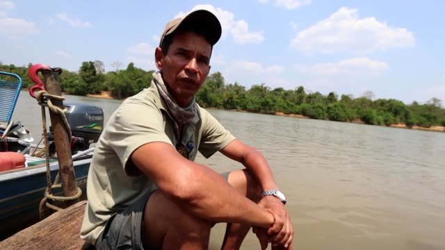 roberto carvalho macedo who pilots a boat on the cuiaba river in pantanal on september 25, 2020 in pocone, brazil. roberto has been a tour guide for... - four animals stock videos & royalty-free footage