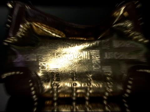 roberto cavalli collection at the cavalli ny flagship store launch at cavalli flagship store in new york, new york on september 7, 2007. - ブランド ロベルト・カヴァリ点の映像素材/bロール
