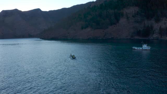 robinson crusoe island aerial drone - north pacific ocean stock videos & royalty-free footage