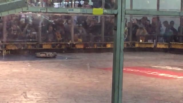 robogames is the olympics of robots where competitors participate in 50 different events with combat robots firefighters lego bots hockey bots... - カンフー点の映像素材/bロール