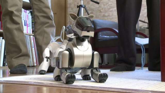 Robot dogs are the perfect pet for some in Japan who go to repairmen turned vets when their pooch breaks down while a full Buddhist funeral ceremony...
