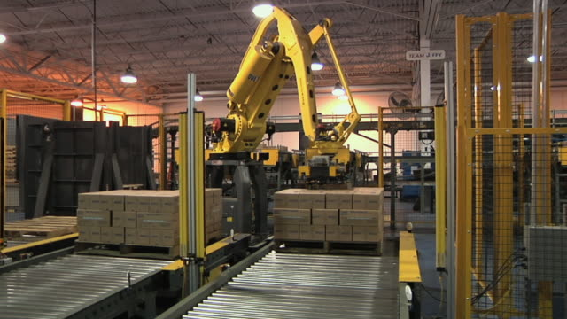 vídeos de stock e filmes b-roll de ms pan robotic arms stacking cartons on pallets in factory, chelsea, michigan, usa - automatizado