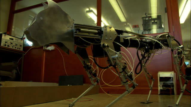 a robotic cat operates in a research lab. - robot stock videos & royalty-free footage