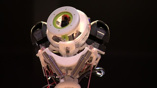 robots at science museum; robots at science museum; exoskeleton of robot / various old fashioned robots on display including robot used in terminator... - terminator stock videos & royalty-free footage