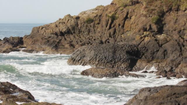 rock at coastline - oregons küste stock-videos und b-roll-filmmaterial