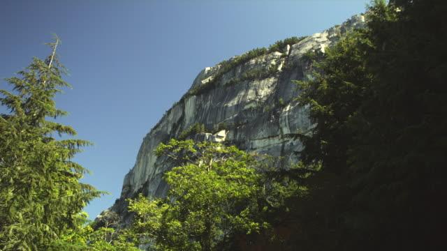 ws la rock cliff behind tree tops, squamish, british columbia, canada - squamish stock videos & royalty-free footage