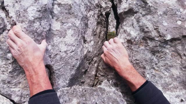 vídeos de stock, filmes e b-roll de rocha alpinista close-up - jurássico