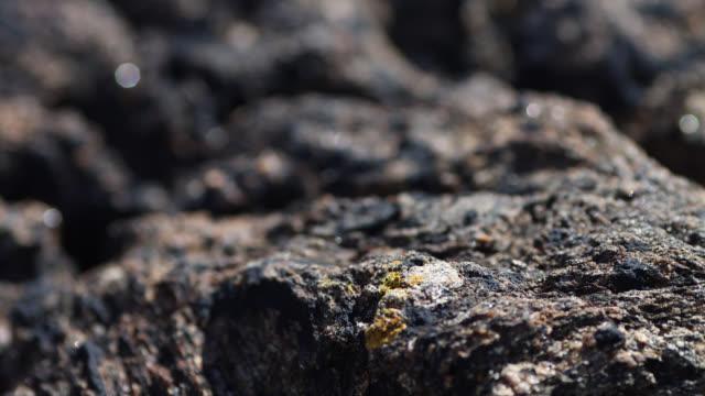 rock detail - granite rock stock videos & royalty-free footage