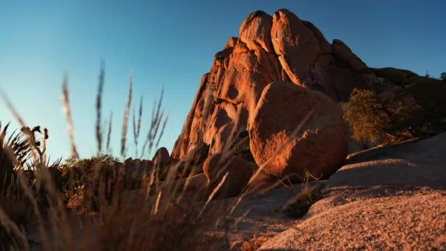 rock formation in joshua tree national park - joshua tree national park stock videos & royalty-free footage