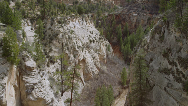 MS AERIAL Rock formation with trees