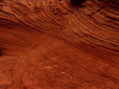 vidéos et rushes de ms, zi, cu, rock formations, zion national park, utah, usa - grès