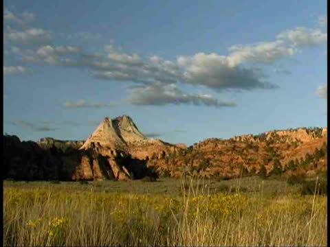 ms, rock formations, zion national park, utah, usa - stationary process plate stock videos & royalty-free footage