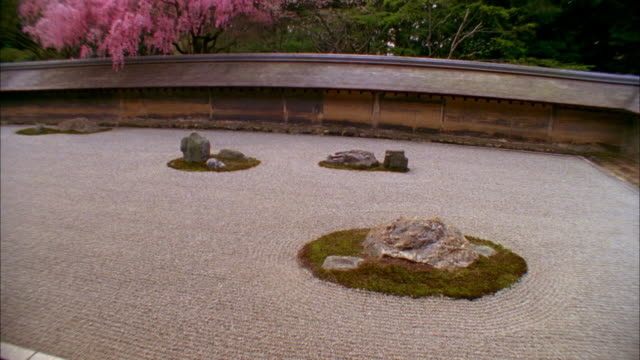 ws ha tu rock garden and cherry blossoms at ryoanji temple, kyoto, japan - oriental garden stock videos and b-roll footage