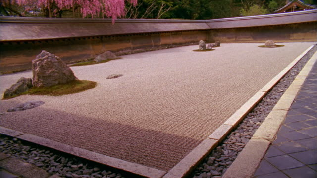 ws tu rock garden and cherry blossoms at ryoanji temple, kyoto, japan - oriental garden stock videos and b-roll footage