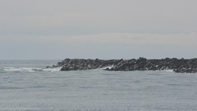 vídeos de stock, filmes e b-roll de rock gourge in ocean  - costa de oregon