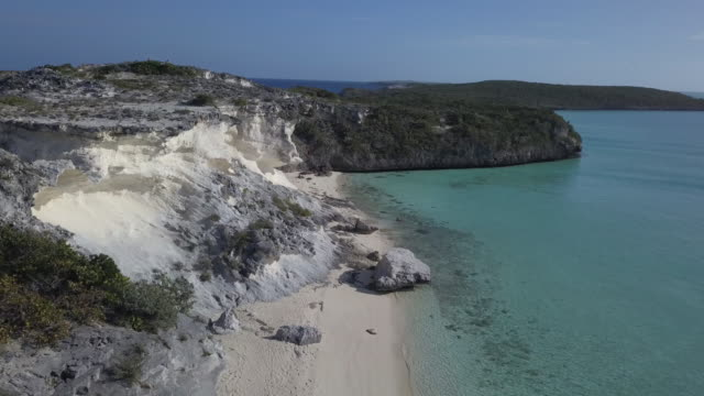 rock iguanas on deserted beach blackpoint, bahamas - limestone stock videos and b-roll footage