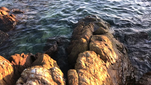 riff mit blauen lagune in samae strand, insel koh larn, pattaya, thailand - cay insel stock-videos und b-roll-filmmaterial