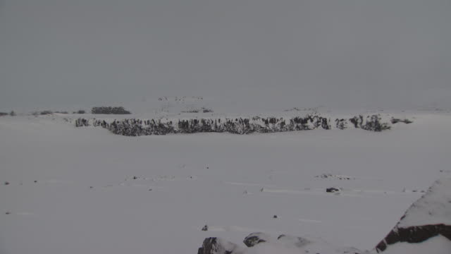 rock shelf snow covered cliff w/ flat snow covered land fg, xws snowy flat landscape w/ some exposed black lava rocks, boulder fg. - boulder rock stock-videos und b-roll-filmmaterial