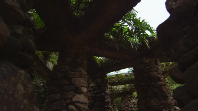 rock structure in jardim botanico, rio - 2013 stock videos & royalty-free footage