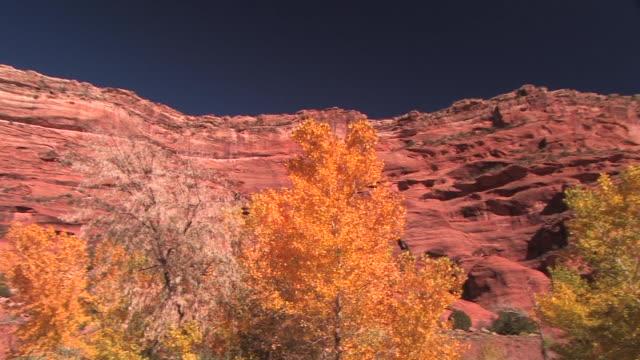 LA WS PAN rock wall/ Canyon de Chelly National Monument, Arizona
