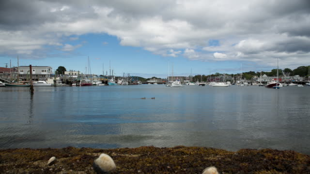 rockport harbour - rockport massachusetts stock videos & royalty-free footage