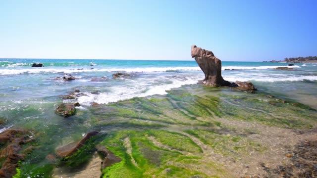 felsen und moose am strand, wenn wellen schlagen schaffen eine lebendige schönheit - meeresalge stock-videos und b-roll-filmmaterial