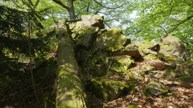 Rocks at the top of Mount Maunert, Taben-Rodt, Rhineland-Palatinate, Germany, Europe