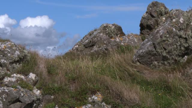 Rocks beside the coastal in south west Scotland