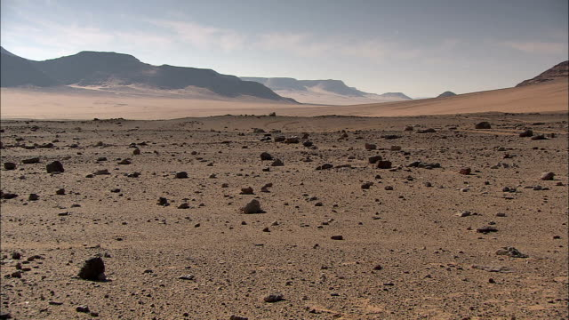 rocks cover a barren area in the sahara desert. - terra brulla video stock e b–roll