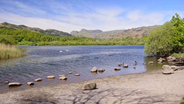 rocks lining a beautiful river stream in the england lake district - wide shot - riverbank stock videos & royalty-free footage