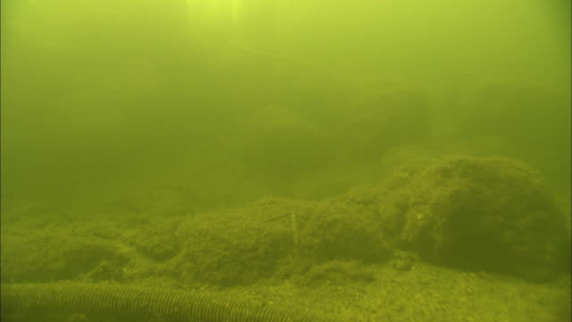 vídeos de stock, filmes e b-roll de rocks surround a research station at the bottom of murky water. - lago