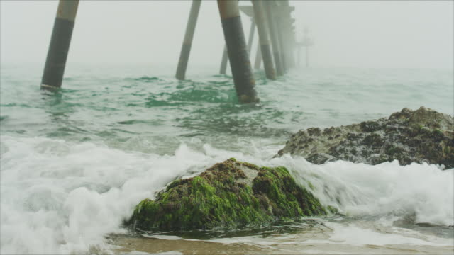 rocks with seaweed in a powerful image of the sea in bad meteorological conditions. the waves are breaking on the stones on the foreground and big bridge (pont del petroli) goes deep into the sea and the fog on the background. - alge stock-videos und b-roll-filmmaterial
