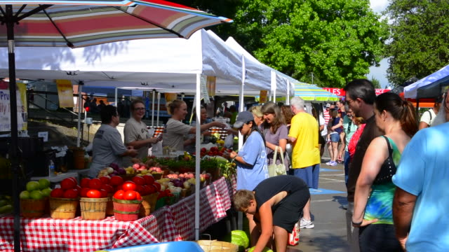 vidéos et rushes de rockwall texas downtown farmers market selling vegetables to locals with bright fresh fruit and vegetable - marché paysan